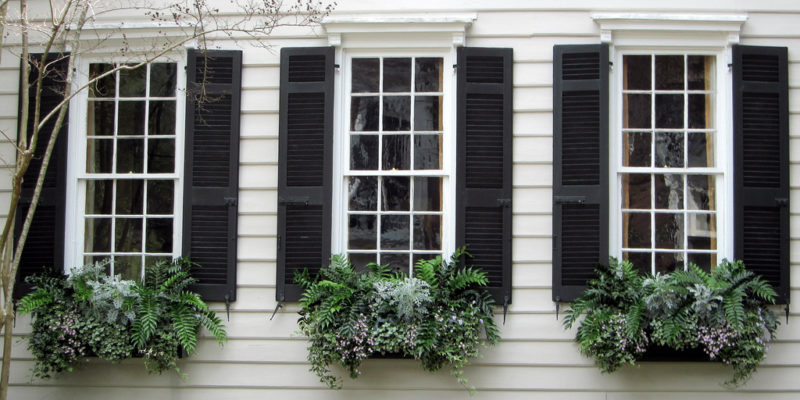 Windows with external shutters