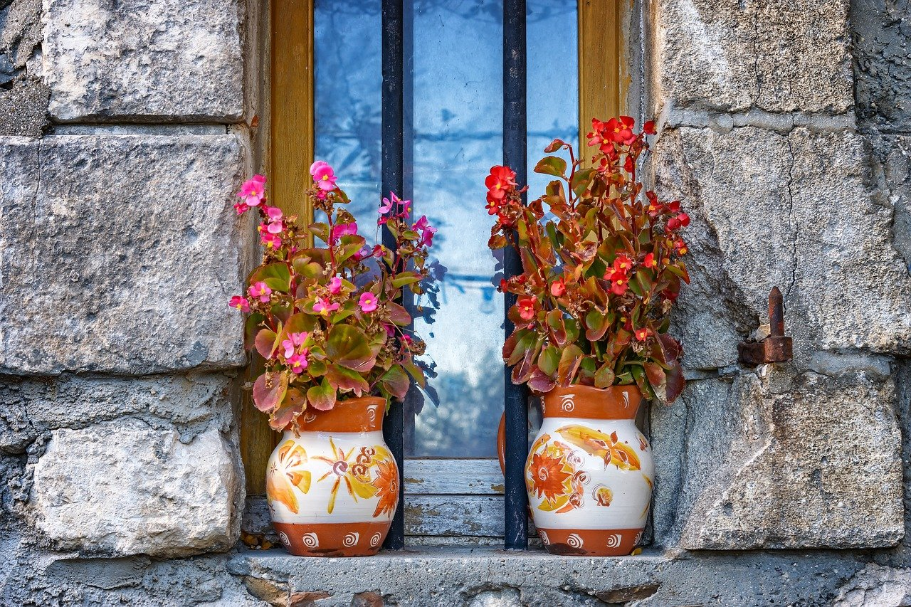 Old timber window frame and windowsill with potted plants